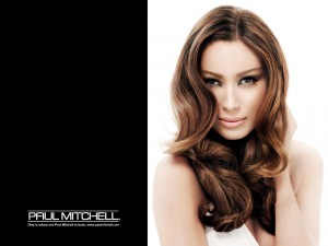 Paul Mitchell Pro Tool Dryers @ Monaco Tampa Salon