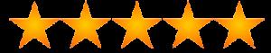 5 stars reviews balayage Monaco Salon Tampa