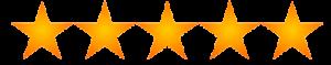 5 stars reviews monaco salon tampa