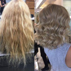 haircut and color monaco salon tampa