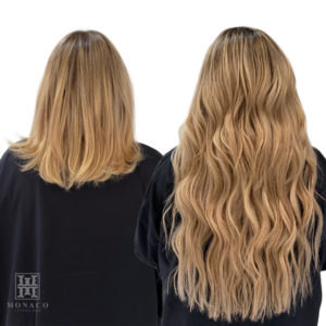 Monaco Hair Extensions Salon Tampa St Pete